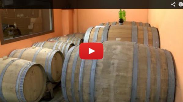 Vini e Olio del Ponente Ligure