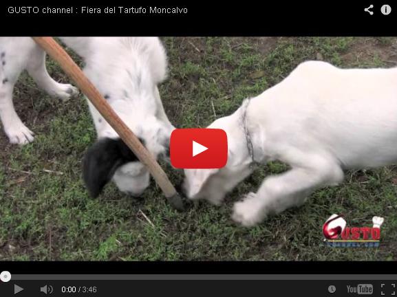 59ª Fiera Nazionale del Tartufo – Moncalvo (AT)