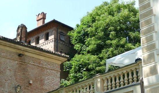 Ais Piemonte VII Giornata del Vino e Dell'Olio – Terre Sapori e Vini