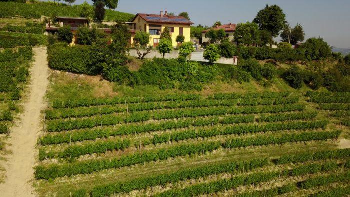 Cantina Piccaluga, Roberto Bellonio – Terre Sapori e Vini