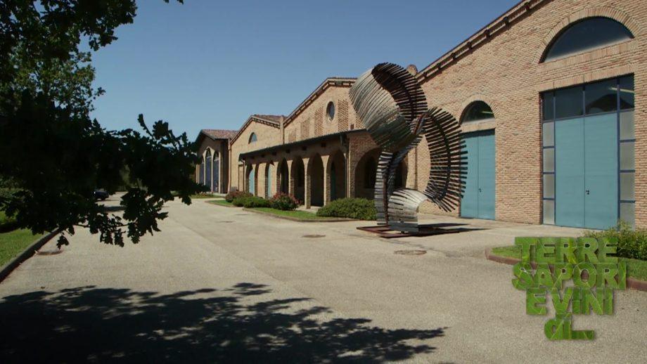 Terre Sapori e Vini – Comunità di San Patrignano