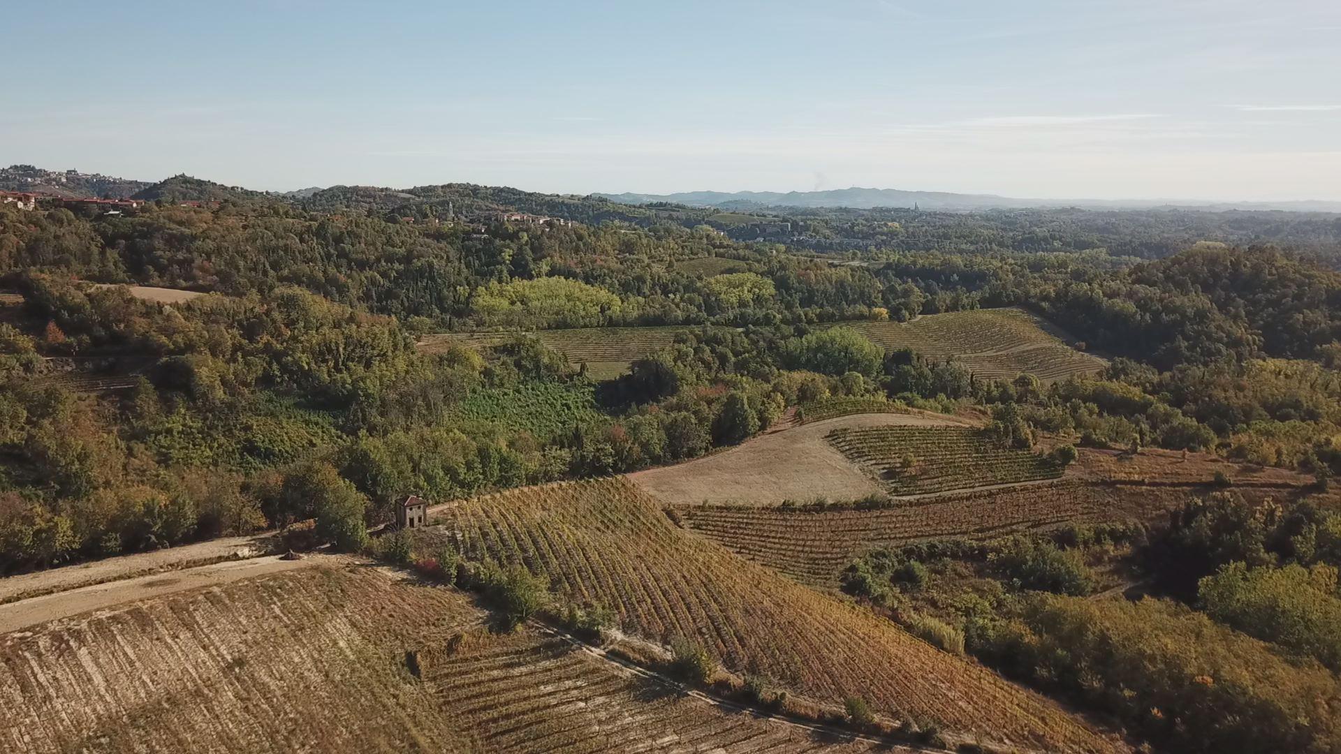 Azienda Agricola Cà del Prete – Pino d'Asti – Terre Sapori e Vini