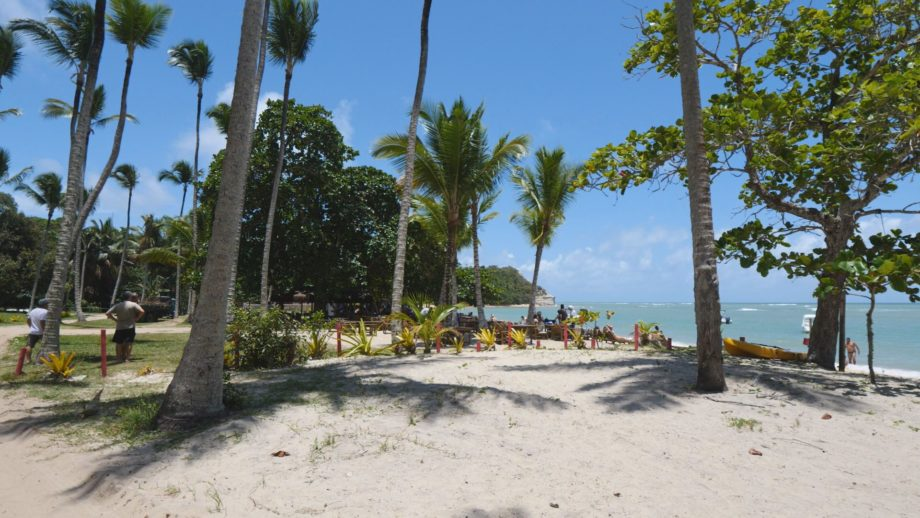 Paesaggi di Gusto – Brasile, Diario di un turista