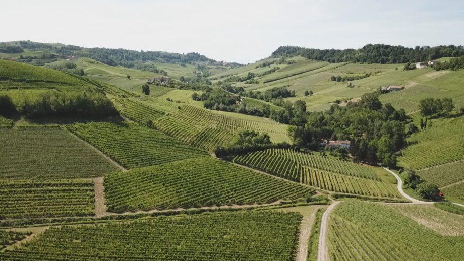 AIS Piemonte – Mastre del Roero e Barbaresco