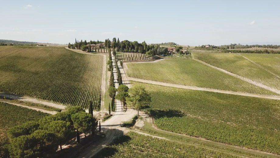 Diario di un Turista – Enogastrotrekking Montepulciano e dintorni