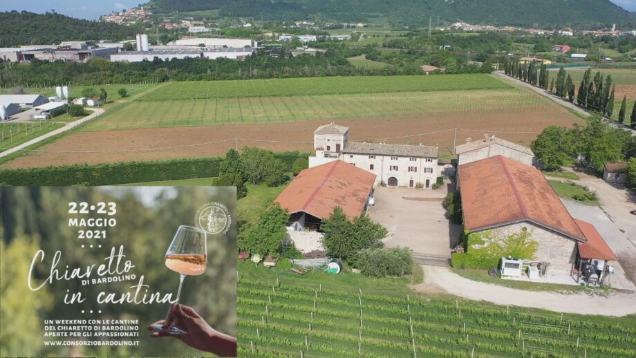 Chiaretto in Cantina – Bardolino (VR)